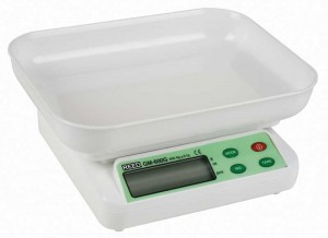 REED GM-600G Digital Scale, 21oz (600g)-